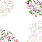 Watercolor floral composition. Stock Images