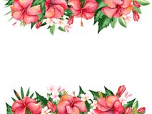 Watercolor floral composition. Royalty Free Stock Image
