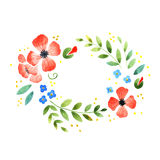 Watercolor floral decorative element Stock Photography
