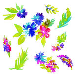 Watercolor floral elements. Set of watercolor floral elements. vibrant abstract flowers and leaves, daisies, rose, palms. aquarelle illustration, elements  on Stock Photos
