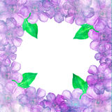 Watercolor floral frame. Royalty Free Stock Images