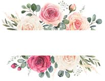 Watercolor floral frame with roses and eucalyptus. Watercolor floral frame composition with roses and eucalyptus vector illustration
