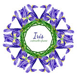 Watercolor floral frame of purple iris flowers. Stock Photography
