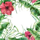 Watercolor floral frame with tropic greenery and flowers. Hand painted exotic border with palm tree leaves, banana. Branch and hibiscus on white background. For royalty free illustration