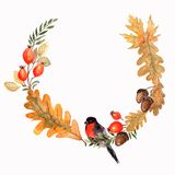 Autumn Wreath with leaves oak, acorns and branches.Watercolor floral illustration. stock illustration