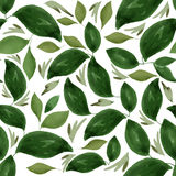 Watercolor Floral Leaf Seamless Pattern Stock Images