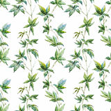 Watercolor floral pattern Royalty Free Stock Image