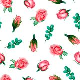 Watercolor floral pattern with roses and eucalyptus isolated on white royalty free illustration