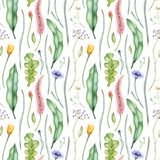Watercolor floral pattern with wildflowers and herbs. Hand drawn botanical illustration. Stock Illustration