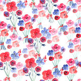 Watercolor Floral Seamless Background Stock Images