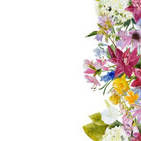 Watercolor floral seamless border Royalty Free Stock Photography