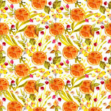 Watercolor floral seamless pattern Royalty Free Stock Image