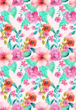 Watercolor floral seamless pattern Royalty Free Stock Images