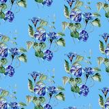 Watercolor floral seamless pattern with flowers and leafs. Stock Photography