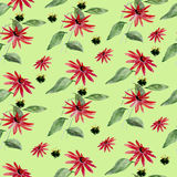 Watercolor floral seamless pattern with flowers and leafs. Royalty Free Stock Photos