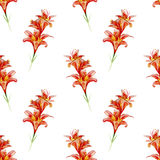 Watercolor floral seamless pattern with flowers and leafs. Royalty Free Stock Image