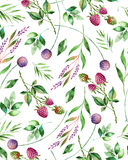 Watercolor floral seamless pattern with flowers,raspberry,branches and foliage. Stock Photography