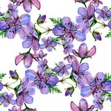 Watercolor floral seamless pattern with Forest geranium flowers on white background Stock Photo