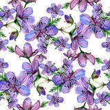 Watercolor floral seamless pattern with Forest geranium flowers on white background Stock Photography