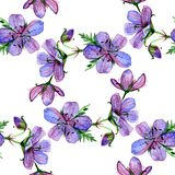 Watercolor floral seamless pattern with Forest geranium flowers on white background Stock Images
