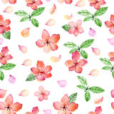 Watercolor floral seamless pattern with spring delicate flowers and leafs Stock Images