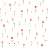 Watercolor floral seamless pattern. Tulips. Vector illustration. Beautiful background. Royalty Free Stock Photography