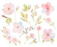 Watercolor floral set of branches of leaves and royalty free illustration