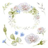 Watercolor floral set Royalty Free Stock Photo