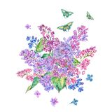 Watercolor floral spring card, blooming branch of lilac. Watercolor floral spring greeting card, blooming branch of lilac. Nature botanical illustration, natural Stock Image