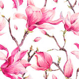 Watercolor Floral Spring Seamless Pattern with Magnolia Stock Photo