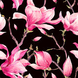 Watercolor Floral Spring Seamless Pattern with Magnolia Stock Image