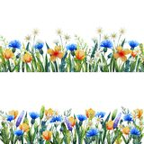 Watercolor floral template for your design. Hand painted watercolor wildflowers. Cornflower, chamomile and grass. stock photo
