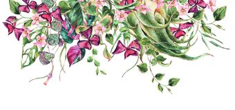 Free Watercolor Floral Tropical Leaves Horizontal Greeting Card Stock Images - 190603784