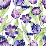 Watercolor floral tulip. Seamless colorful vector illustration