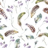 Watercolor floral vintage seamless pattern with. Feathers, watercolor illustration Stock Photo