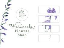 Watercolor floral on white background 700 dpi Similar illustration leaf green color design flowers shop gift card vector illustration