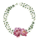 Watercolor floral wreath with eucalyptus, baby eucalyptus leaves and peony flowers. Stock Photography