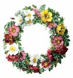 Watercolor Floral Wreath Illustration Stock Photo