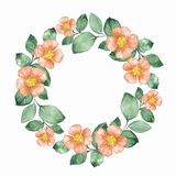 Watercolor floral wreath. Round frame 02. Watercolor floral wreath. Hand drawn element for design. Round frame Stock Image