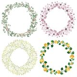 Watercolor floral wreaths set Royalty Free Stock Photos