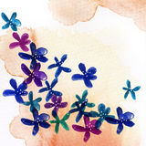 Watercolor  flower Royalty Free Stock Photos