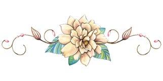 Watercolor Flower arrangement illustration Royalty Free Stock Image