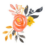 Watercolor Flower Bouquet Coral Garland Leaf Spring Summer Wedding Leaves   Royalty Free Stock Photography