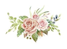 Watercolor flower bouquet,Leaf and buds, Botanic composition layer path, clipping path isolated on white background. Watercolor roses, watercolor flower bouquet royalty free illustration