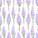 Watercolor flower nature pattern. Watercolor summer lavender flower pattern. Vector nature seamless background Royalty Free Stock Photography
