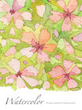 Watercolor flower painted background Stock Image