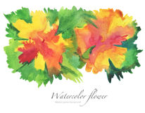 Watercolor flower painted background. Royalty Free Stock Image