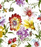 WATERCOLOR FLOWER PATTERN ON WHITE royalty free illustration