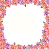 Pink frame with pink and purple flower stock photos