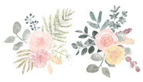 Watercolor flower set. Colorful collection with leaves and flowers. Design elements for invitations, wedding or greeting cards